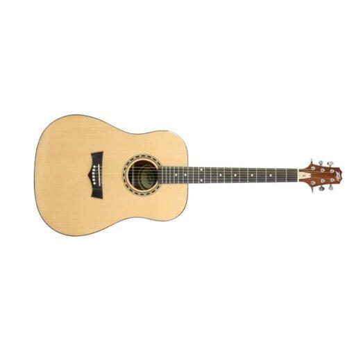 DW-1 Acoustic