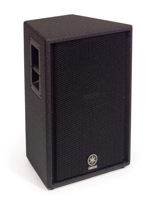 12' 2 WAY LOUDSPEAKER SYSTEM